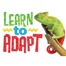 Learn to adapt